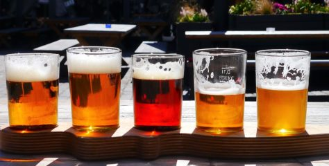 Are you a Craft Beer lover? Then have a look at these local breweries for the ultimate Craft Beer Experience!